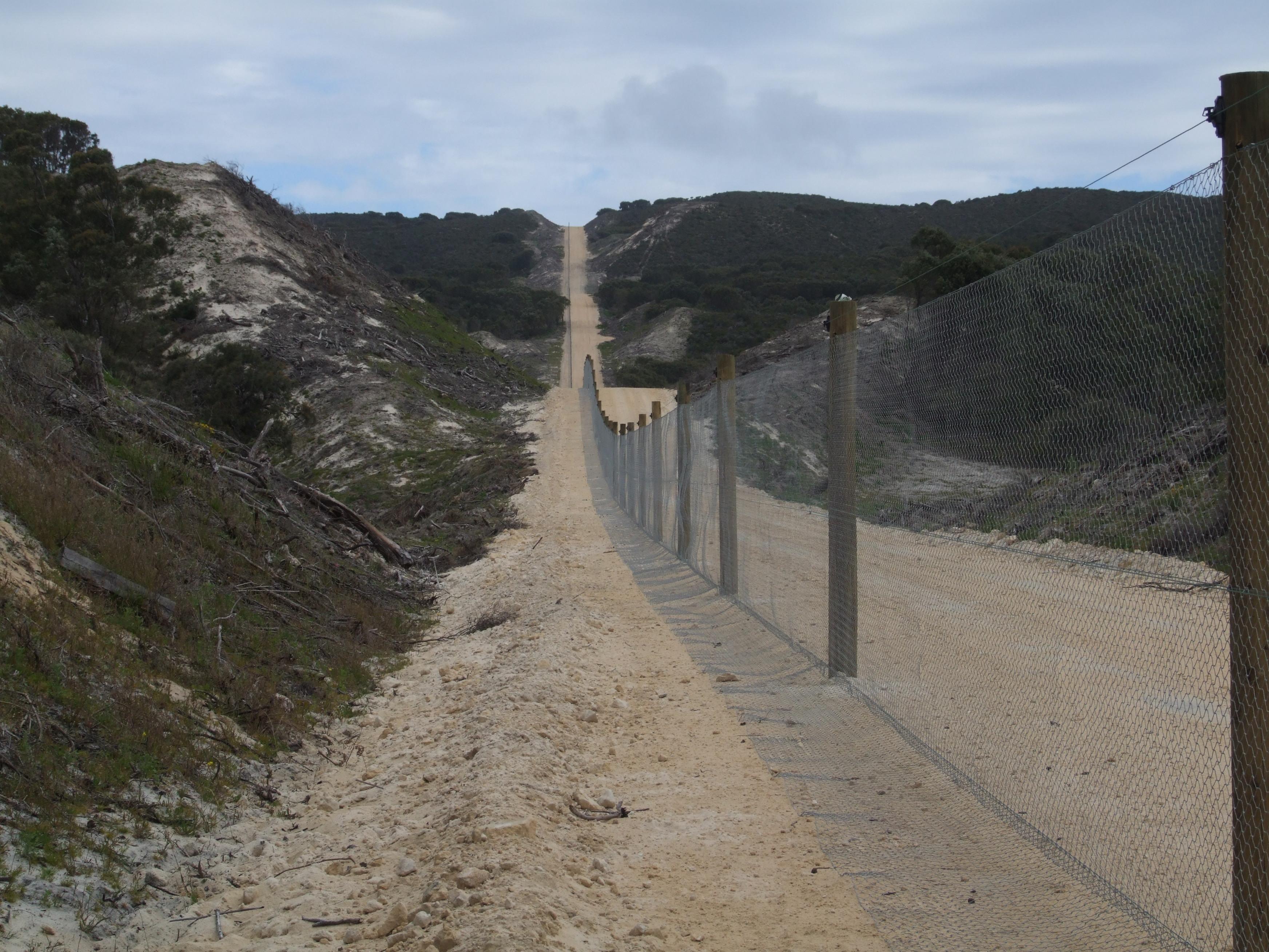 Land Surveyor - straight fences